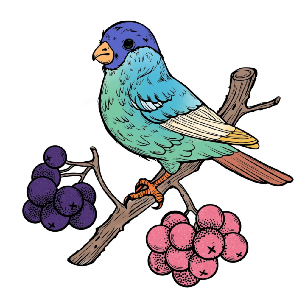 A Picture Of A Bird That I Have Coloured In.
